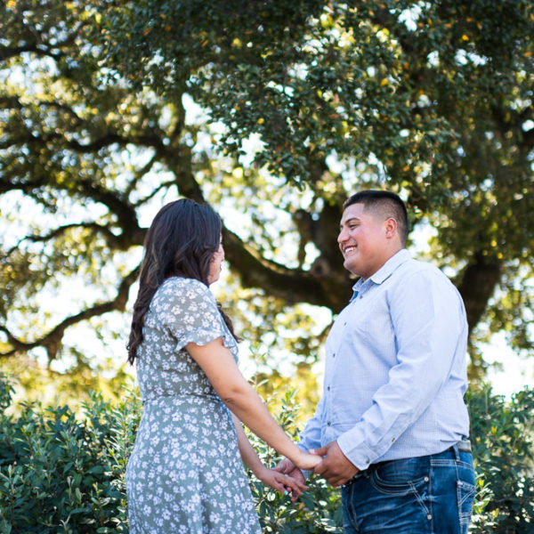 Jasmin and Joel's Napa Valley Vineyard Proposal