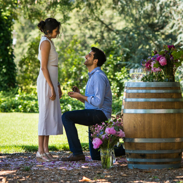 Manisha and Sidharth's Sonoma Vineyard Proposal